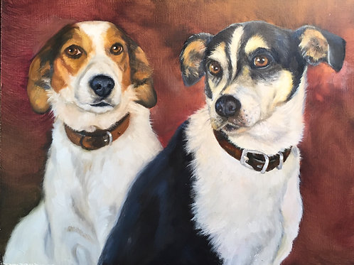 Two Dog Portraits