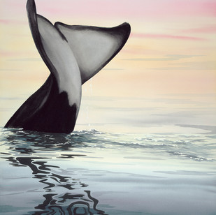 """AW1  """"Whaleplay"""""""
