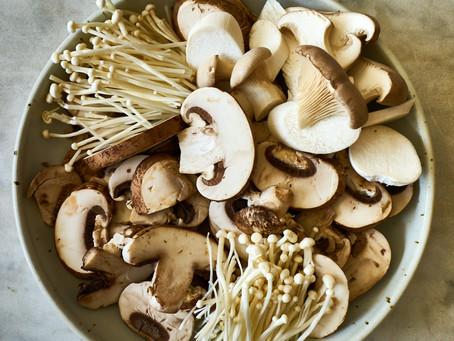 Marvelous Mushrooms