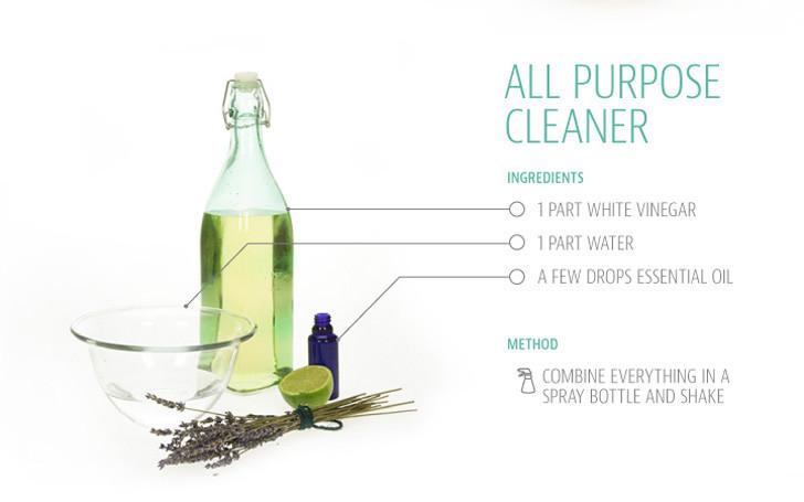 using common everyday ingredients