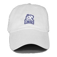 白老帽.png