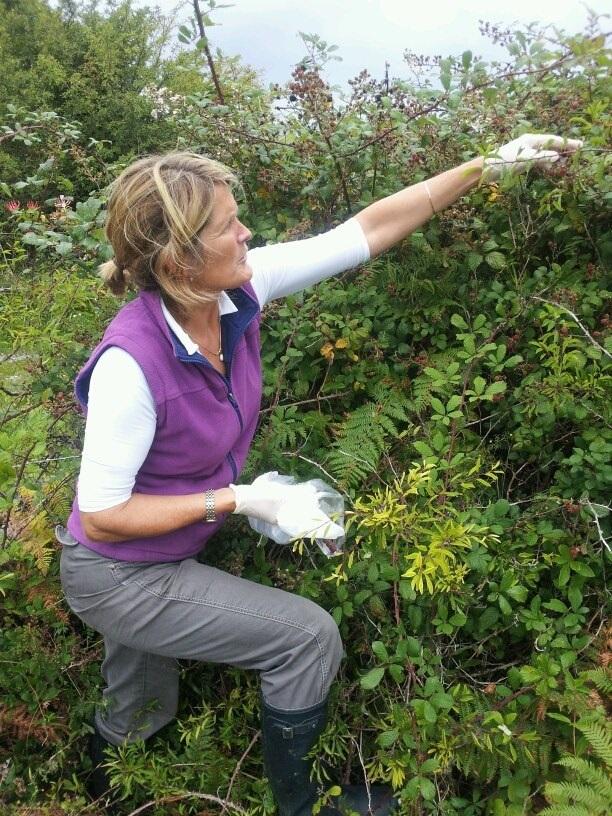 Deborah+Evers+foraging.jpg