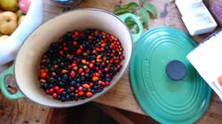 Foraged wild fruit
