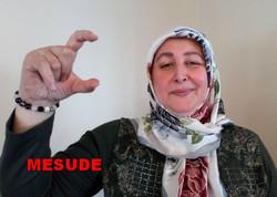 mesude1