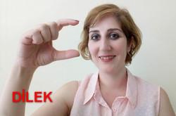 dilek4