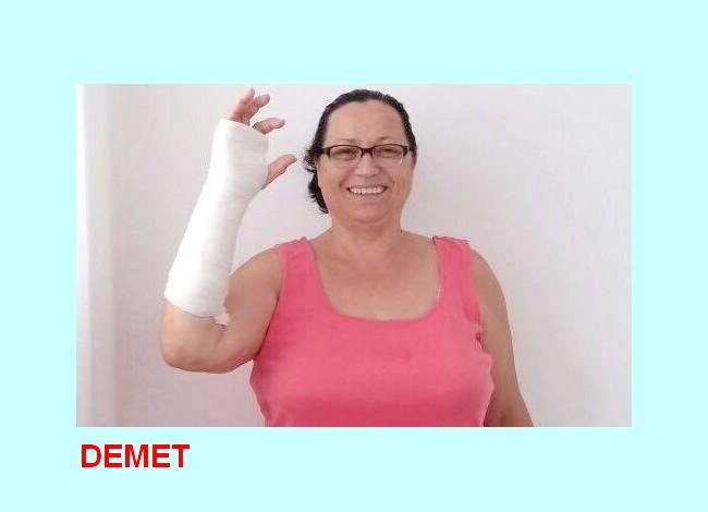 Demet3