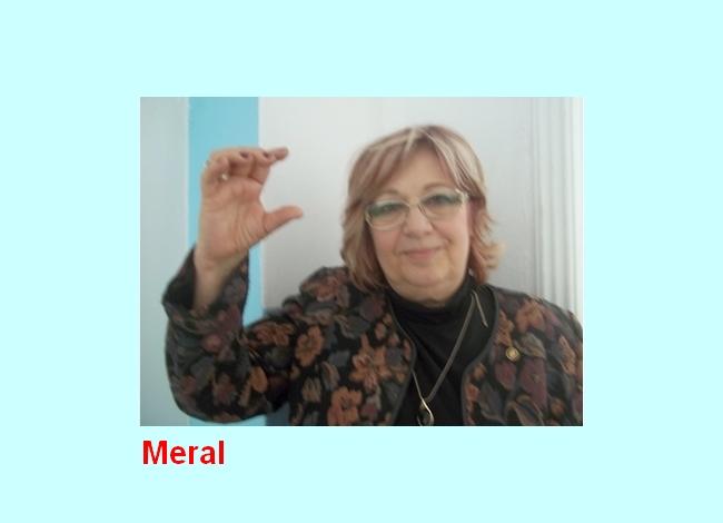 Meral2