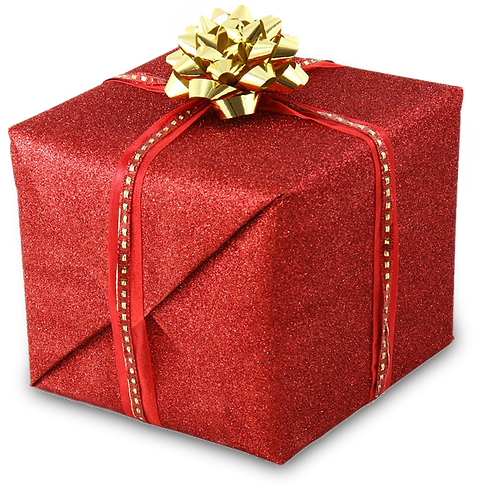 christmas-package.png