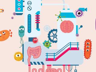 La Microbiótica: Una revolución para sanar la Tierra y el ser humano