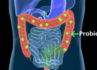 La flora intestinal humana se encuentra en 'riesgo de extinción' por las dietas bajas en fibra