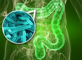 Uso de probióticos aumenta por tendencia hacia lo natural
