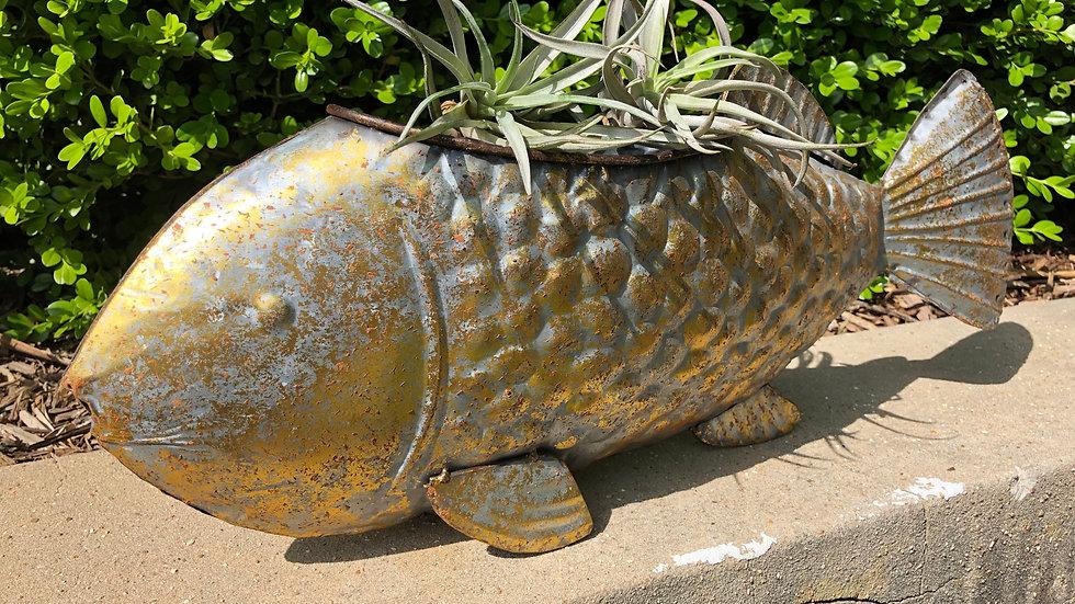 Metal Fish Planter