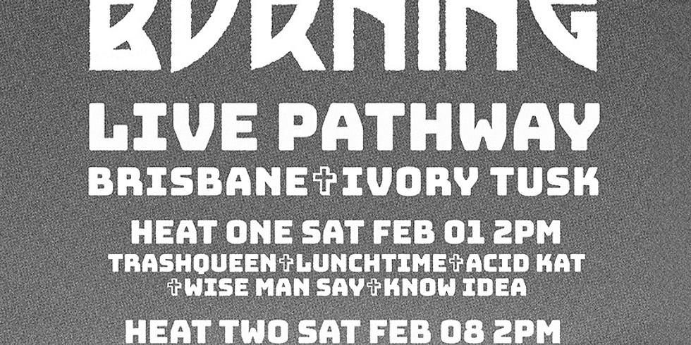 Mojo Burning Live Pathway Heat 1 (Ivory Tusk)