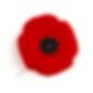 legion-history-of-the-poppy-wbg-resized.