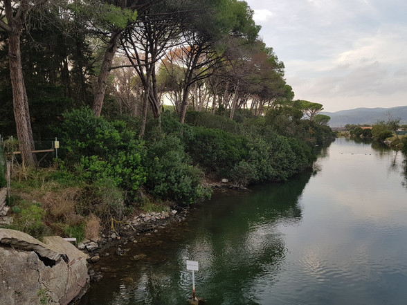 Canale Ansedonia