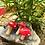 Thumbnail: Mini Mushroom Charms