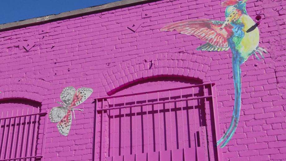 146491_Graffiti_film_pink_intro_263sec_w
