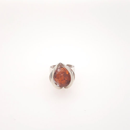 Jacek Ostrowski - Ring Galaxy Collection - Cognac