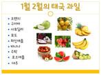 태국 계절 과일 Fruits of Thailand