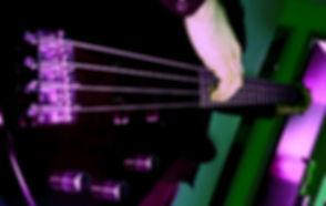 bass website.jpg