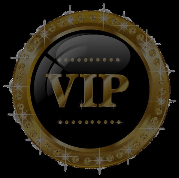 vip-logo_edited_edited.png