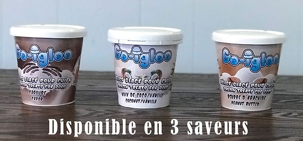 friandises pour chiens Go Igloo