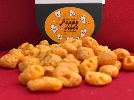 pop-corn-pou-chien-3.jpg