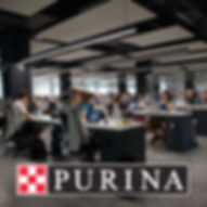 purina-fini_edited.jpg