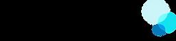 porter billing services logo.png