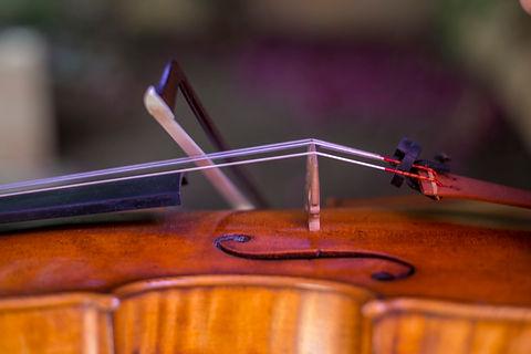R. Sabine violin pic.jpg