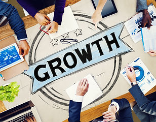 Business Growth Planning Strategy Develo