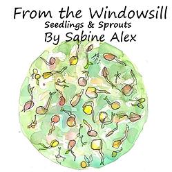 Windowsill_Image.png