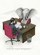 Addressing the Elephant in the Room.jpg
