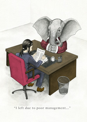 Addressing the Elephant in the Room