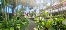 Kamala Beach Estate Garden View