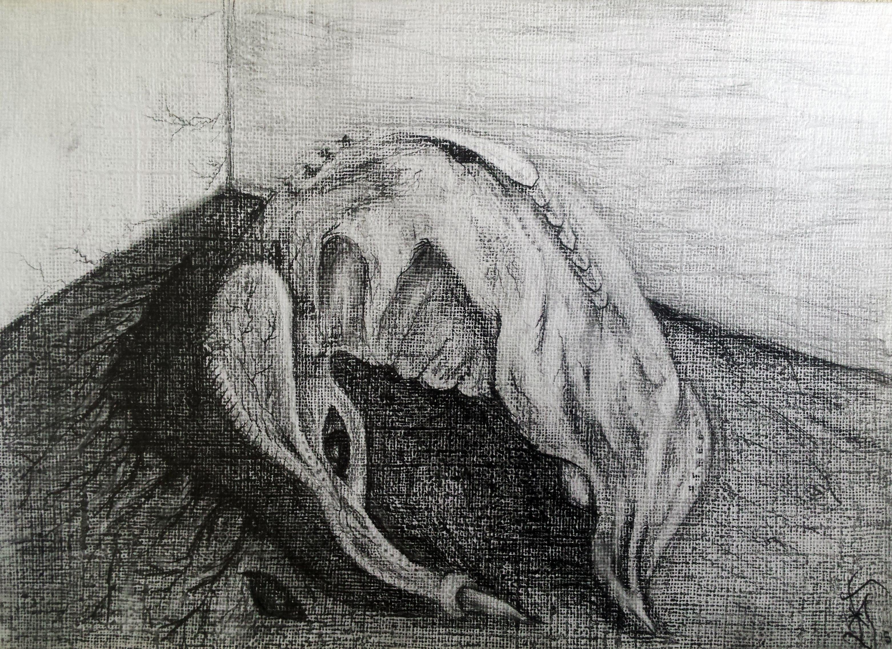 sketch of a hybrid in my dream