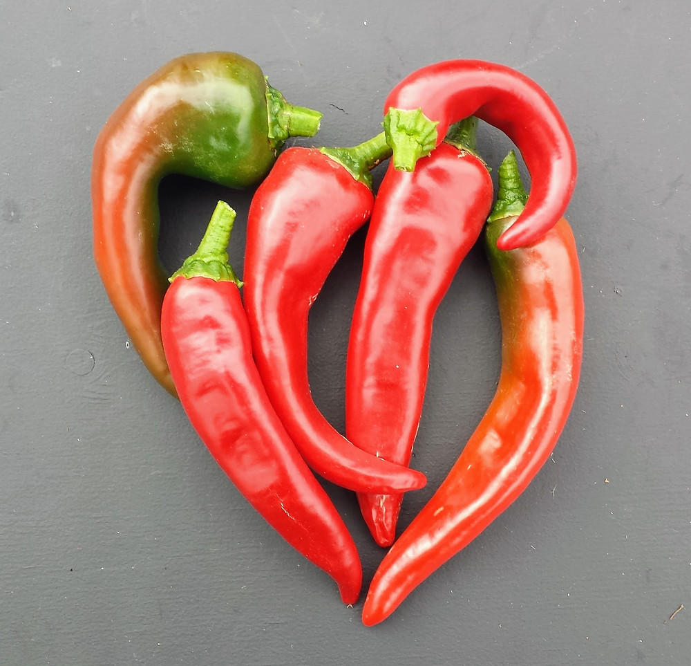 Heart made of peppers