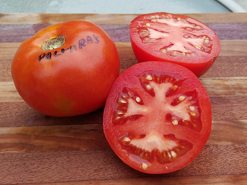 PALMIRA'S NORTHERN-ITALIAN HEIRLOOM