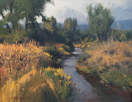 STREAM IN LATE SUMMER
