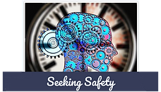 seeking safety_edited.png