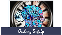 seeking safety.png