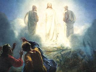Transfiguration in Suffering