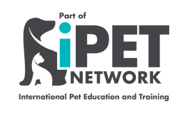iPET_All-wording_logo-768x461.png