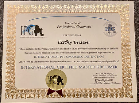 ICMG Certificate.jpg