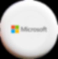 Microsoft Custom Ultimate Discraft Discs