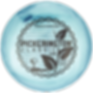 Disc Golf Event  Custom Disc Golf Disc