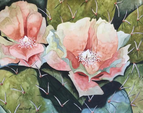 Prickley Blossoms
