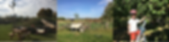 Schermafbeelding 2019-01-21 om 19.41.17.