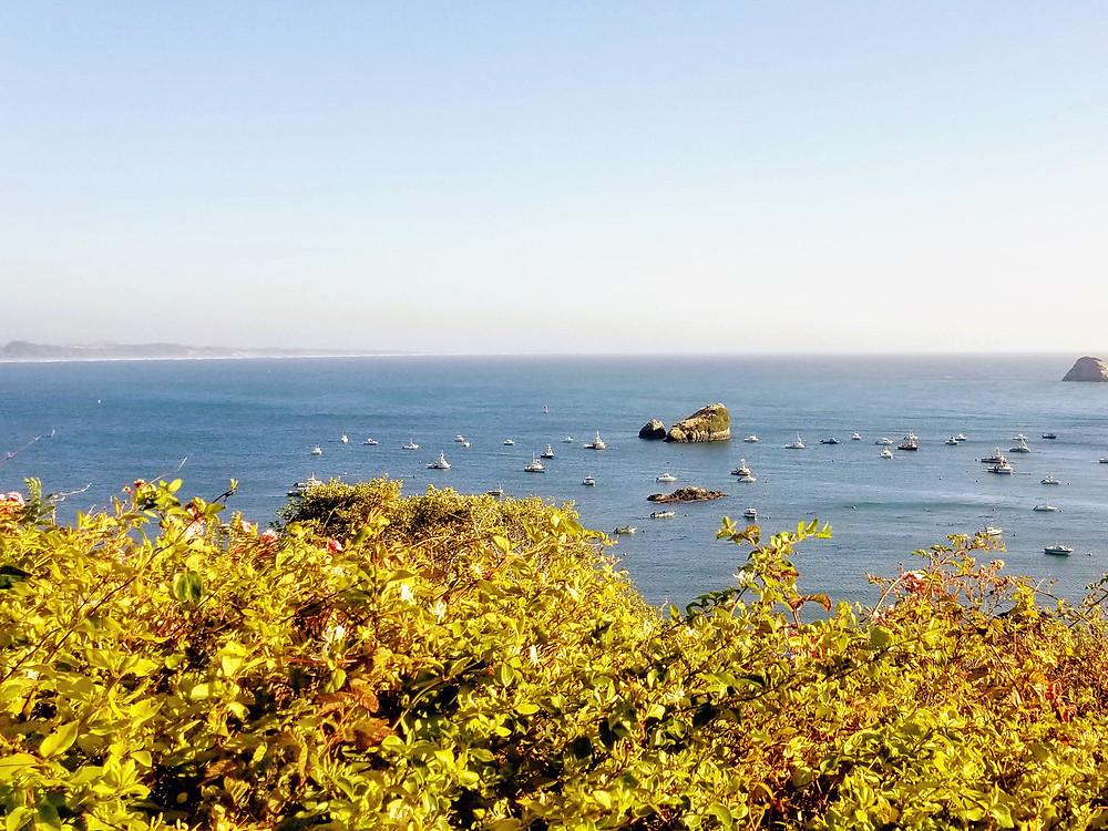 Coastal view in Trinidad, CA