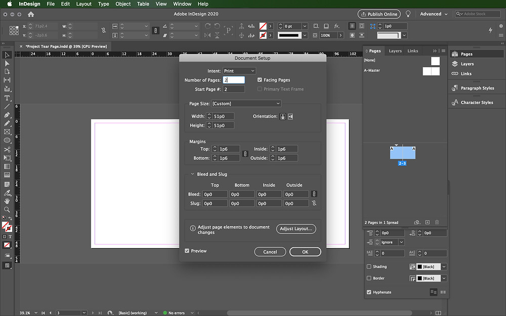Document Setup InDesign